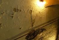 humidite-cave