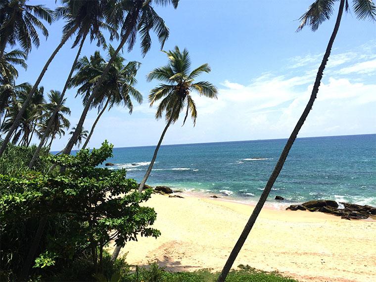 true-srilanka