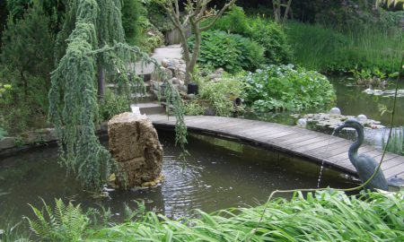 Miroir d'eau Aqualife: votre expert dans le domaine des bassins aquatiques