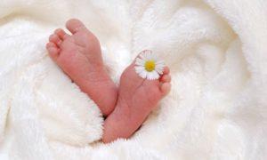 Célébrez l'arrivée de bébé avec La Chouette Famille